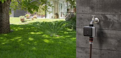 Умный участок: автоматический полив растений